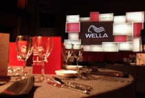 portfolio-preview-wella