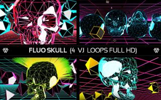 FluoSkullportfolioimage